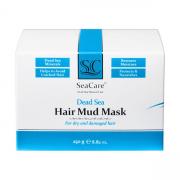 DSHair Mud Mask5